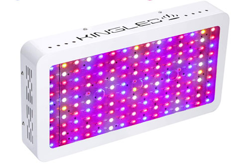 King Plus 1500W Double Chips Full Spectrum LED Grow Light for Greenhouse