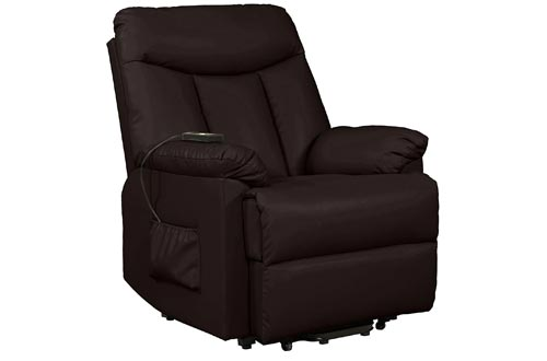 Domesis Renu Leather Wall Hugger Power Lift Chair Recliner