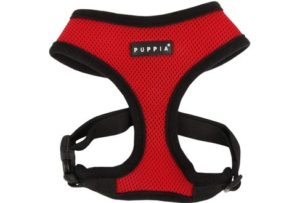 RUFFWEAR - Front Range Dog Harness, Reflective and Padded Harnesses for Training and Everyday