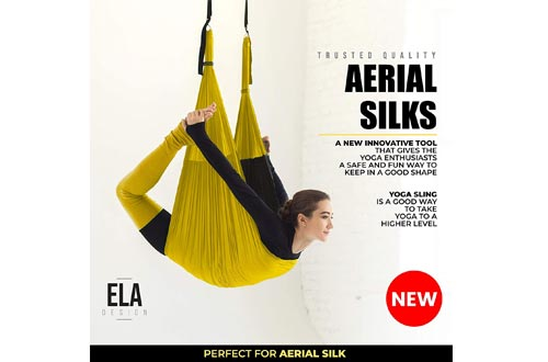 ELA Design Yoga Swings - Yoga Trapeze Home Workout Kit - Yoga Hammock with 3 Resistance Bands (with Ceiling Mounts)